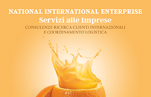 National International Enterprise